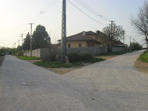 Citromfa utca